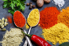 Assortment of spices seasoning  on a black stone Stock Photography