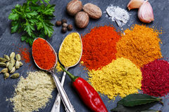 Assortment of spices seasoning  on a black stone Stock Image