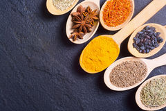 Assortment of spices Royalty Free Stock Photo