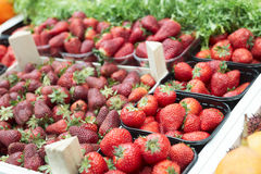 Assortment of strawberries Royalty Free Stock Photos