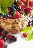 Assortment of summer berries in the basket. Royalty Free Stock Photos