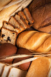 Assortment of tasty bread. Still-life made from different kinds of fresh tasty bread and ears. Vertical composition stock image