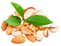 Assortment of tasty nuts with leaves Royalty Free Stock Photography