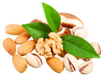 Assortment of tasty nuts with leaves Royalty Free Stock Images