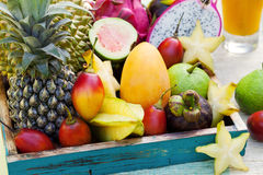 Assortment of tropical exotic fruits with smoothie and fresh juice Royalty Free Stock Photos