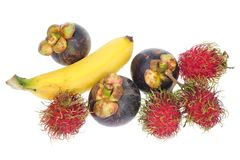 Assortment Of Tropical Fruits Stock Photography