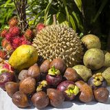 Assortment of tropical fruits in island Bali, Indonesia. Close up Royalty Free Stock Image