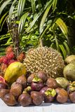 Assortment of tropical fruits in island Bali, Indonesia. Close up Stock Photos