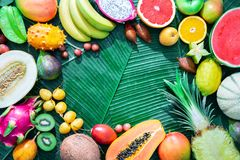 Assortment of tropical fruits on leaves of palm trees Stock Photos