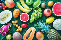 Assortment of tropical fruits on leaves of palm trees Stock Images