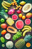 Assortment of tropical fruits with leaves of palm trees and exot. Ic plants on dark wooden background. Top view royalty free stock image