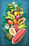 Assortment of tropical fruits with palm leaves and exotic flower Stock Images
