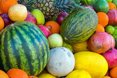 Assortment of tropical fruits Royalty Free Stock Images