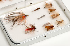 Assortment of Trout Flies or Fishhooks in Aluminum Case Stock Images