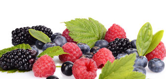Assortment of various berries isolated white Royalty Free Stock Photo