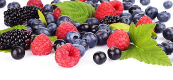 Assortment of various berries  white Royalty Free Stock Photos