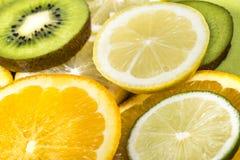 Assortment of various citrus fruits Stock Photography