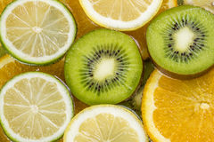 Assortment of various citrus fruits Royalty Free Stock Image