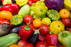 Assortment of vegetables. Eggplant, cabbage, red cabbage, paprika, fresh organic vegetables Royalty Free Stock Photos