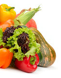 Assortment vegetables and fruits Stock Photos