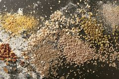 Assortment of whole grain seeds for baking bread. Assortment of whole grain and sunflower seeds for baking bread scattered on a bakery table with flour viewed royalty free stock photos