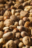 Assortment of Whole Raw Mixed Nuts Royalty Free Stock Photo