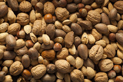 Assortment of Whole Raw Mixed Nuts Royalty Free Stock Images