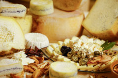 Assortmentof organic gourmet cheeses Stock Photography