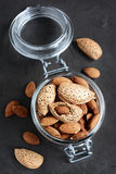 Assorty of nuts: almonds and hazelnuts Royalty Free Stock Photos