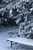 Assoupissement de jardin d'hiver Photo stock