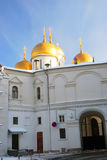 Assumption church in winter. Moscow Kremlin. Royalty Free Stock Photos