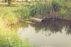 Assunto da ecologia: o esgoto derrama desperdiça para fora à tubulação do lago/esgoto derrama para fora ao lago imagem de stock