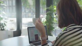 Assunto la direzione della spalla sinistra: la ragazza lavora con il computer portatile, tiene una tazza stock footage