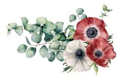 Assymetrisk bukett för vattenfärg med anemonen och eukalyptuns Handen målade röda och vita blommor, eukalyptussidor och royaltyfri illustrationer