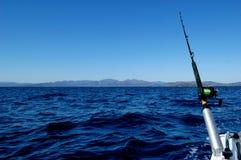 Asta di pesca Fotografie Stock