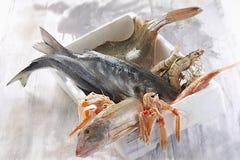 Asta di simbolo di pesca/marea, mercato ittico fotografie stock libere da diritti