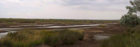 Astana marshes. Kazantip Peninsula in Crimea, Astana marshes. Evening. Stitched Panorama Stock Image