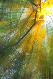 Aste cilindriche della foresta di luce solare Immagine Stock