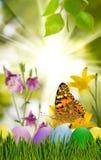 Asterów jajka w trawie, motylu na nieba tle i kwiatach, Zdjęcia Stock