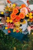 asterów jesień magenta nastrój wiele menchie Zdjęcia Stock