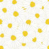 Aster blanc, Daisy Flower Seamless Background Illustration de vecteur illustration de vecteur