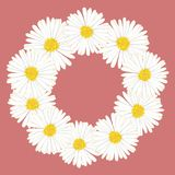 Aster blanc, Daisy Flower Wreath Illustration de vecteur Photos libres de droits
