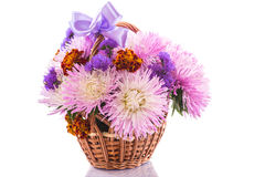 Aster bouquet Stock Photo
