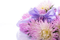 Aster bouquet Royalty Free Stock Image