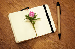 Aster bud on a notebook Stock Image