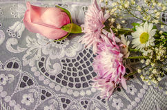 Aster with bud pink rose on lace tablecloth Stock Images
