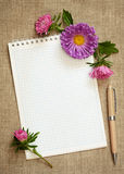 Aster composition on a notepad. On gray canvas background Royalty Free Stock Photo