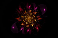 Aster. Created in Apophysis. Abstract flower. Computer generated picture stock illustration