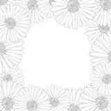 Aster, Daisy Flower Outline Border Illustration de vecteur Images stock