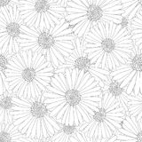 Aster, Daisy Flower Outline Seamless Background Illustration de vecteur illustration stock